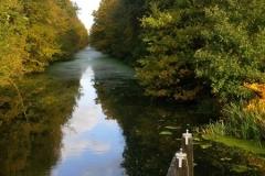 herfst bij het kanaal
